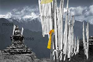 prayer flags (11)